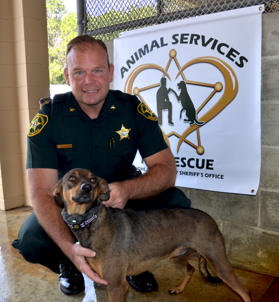 Animal Services Pet of the Week: Chloe